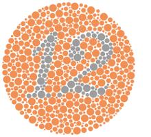 test couleurs position 1