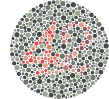 test couleurs position 4